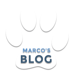 Marco's Dog Blog